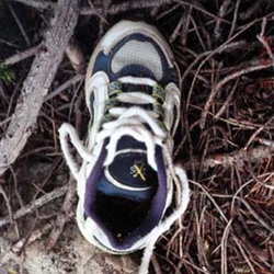 Jaryds Shoe